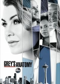 Анатомия страсти / Анатомия Грей (2005-2020) Grey's Anatomy